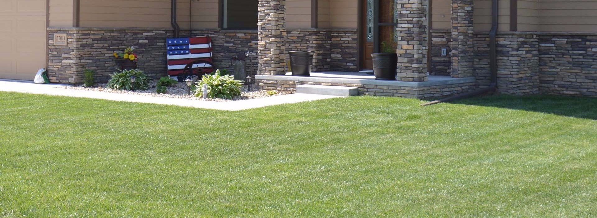 Grub Control Services by Go Green Lawns LLC in Louisville, %%state%%